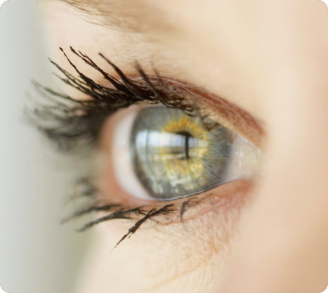 Divine Vision 12 Customer Reviews