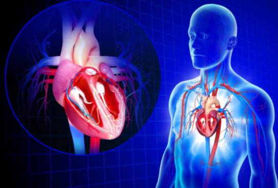 Heart Beat 911 Capsules - Hidden Facts Revealed!