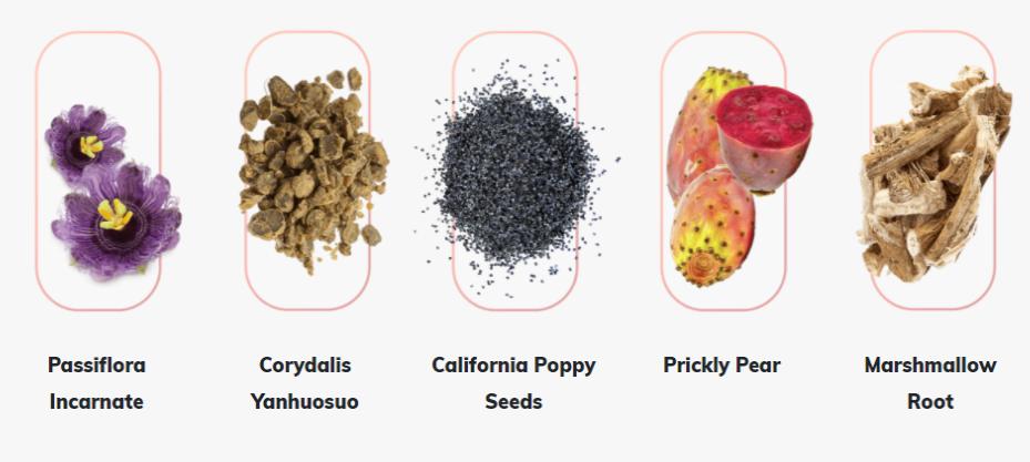 NervogenPRO Ingredients List - What About Dosage Level? Read