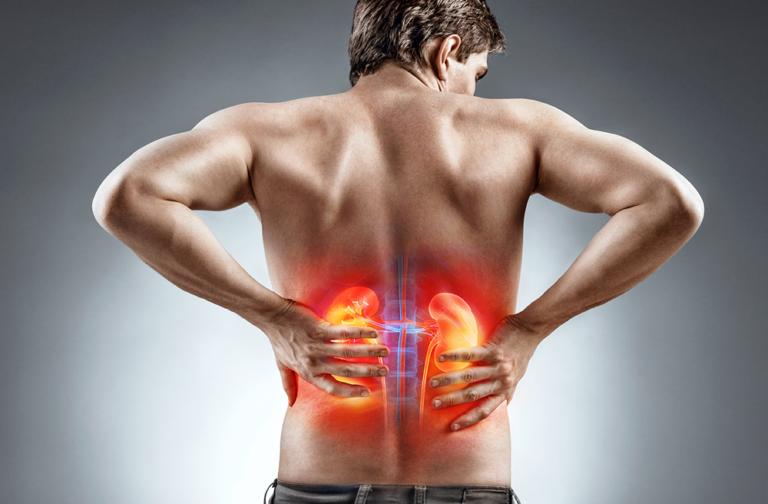 The Chronic Kidney Disease Solution Program