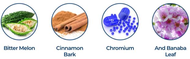 GlucoseShield Ingredients