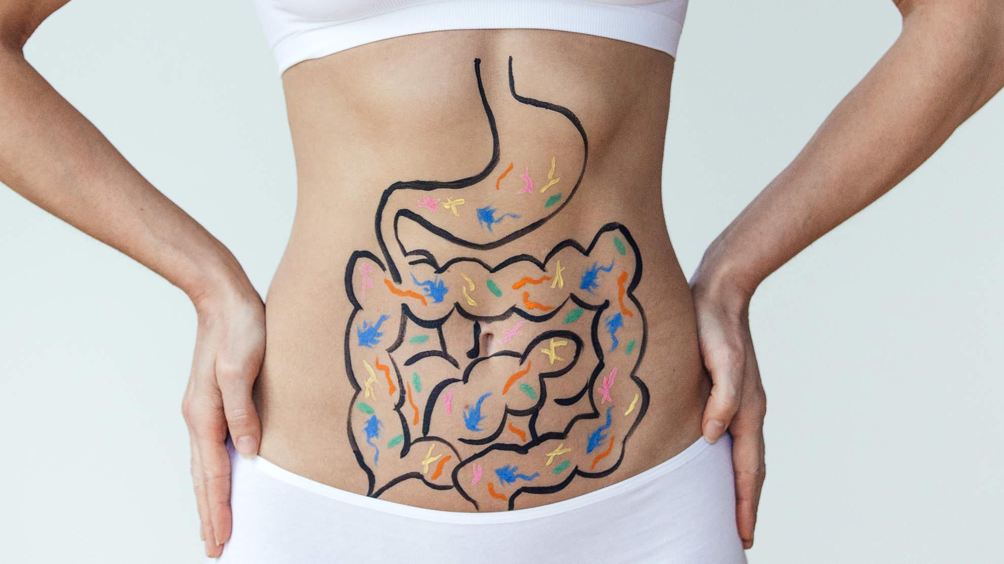 Terra Health Essentials Advanced Probiotics Dietary Supplement